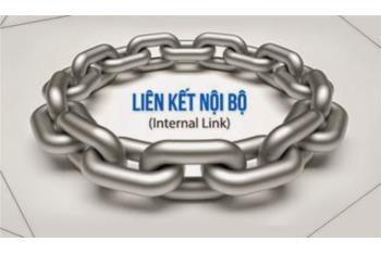 Thiết kế web bất động sản lên top Google – Phần 8: Internal Link